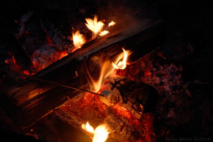campfire bananas