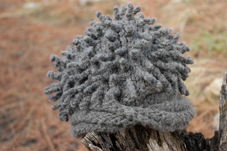 hedgehog hat outside 2