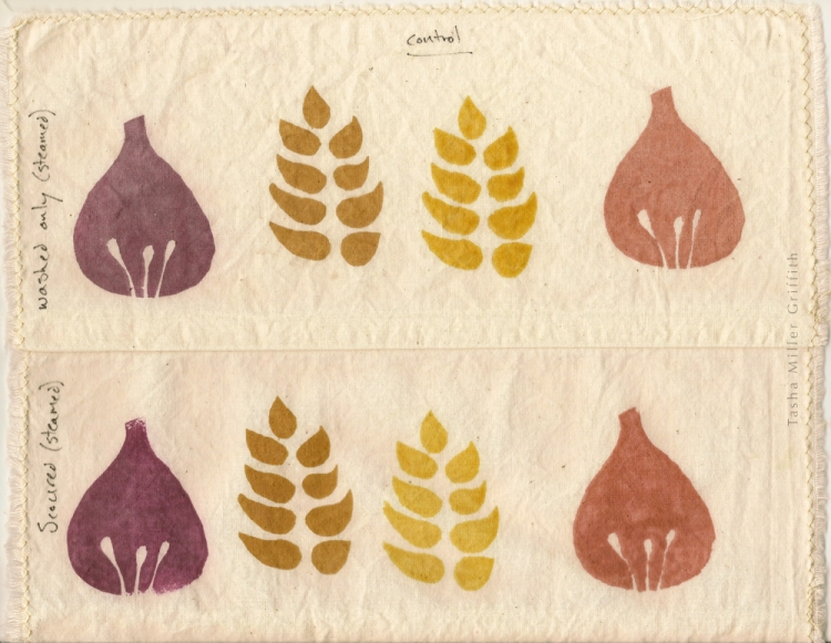 Simple fig and wheat shapes printed with natural dyes.